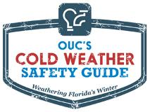 OUC's Winter Safety Survival Guide