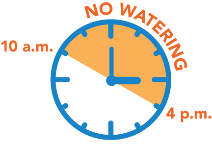 Watering Times